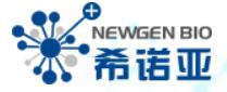 Newgen Biotech USA