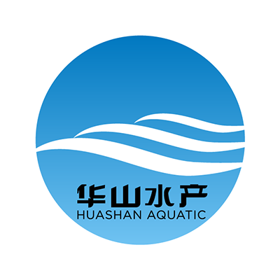 Huashan Technology