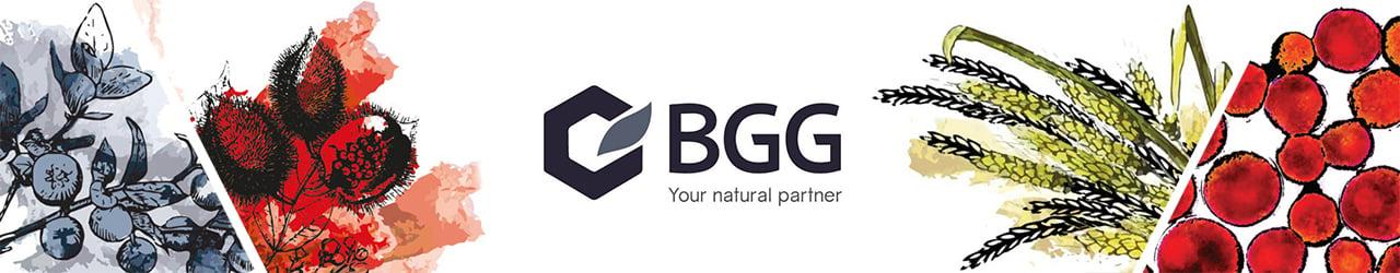 Beijing Gingko Group (BGG)