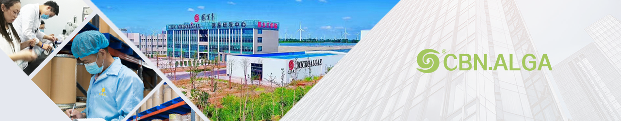 Dongtai City Spirulina Bio-Engineering Co., Ltd.