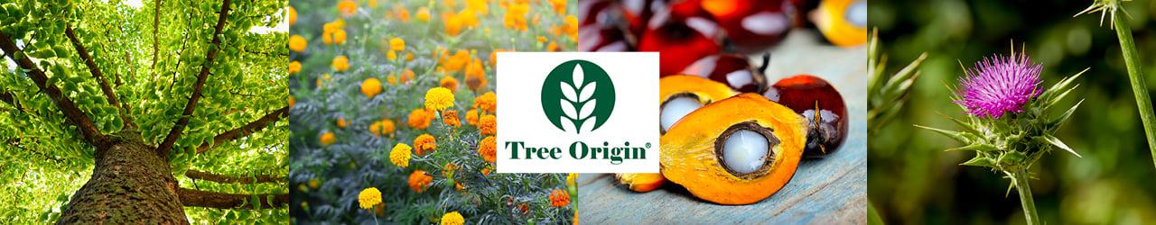 Tree Origin