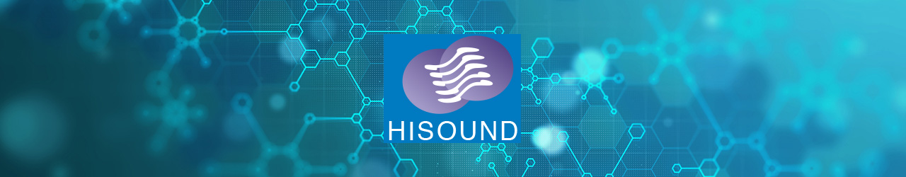 Hisound Pharmaceutical Co. Factory Banner