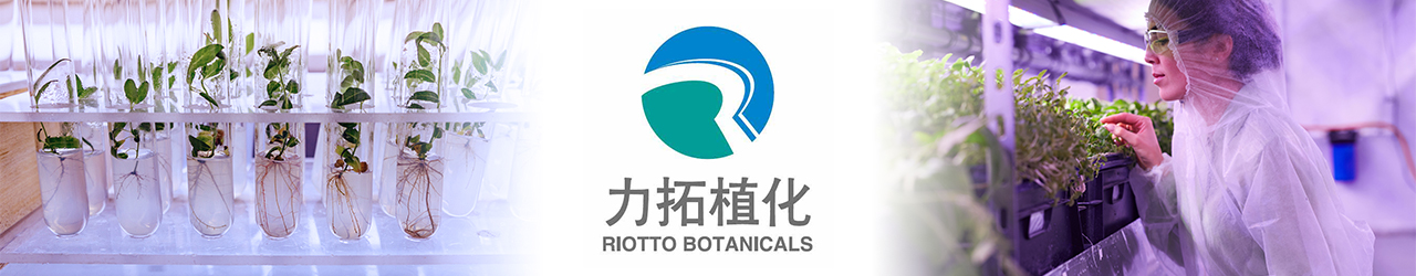 Riotto Botanical Co., Ltd.