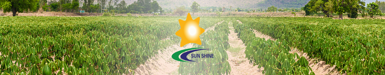 Sunshine Biotech International Co., Ltd.