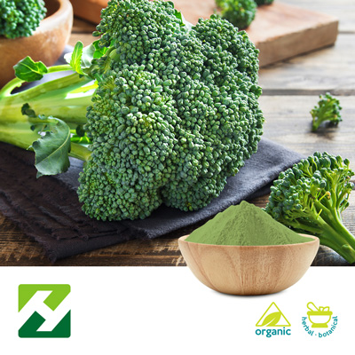 Organic Broccoli Extract 4:1 (25kg Drum) by Organic Herb Inc.