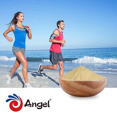 Angel Yeast Beta Glucan (1,3/1,6) 70% by Angel Yeast