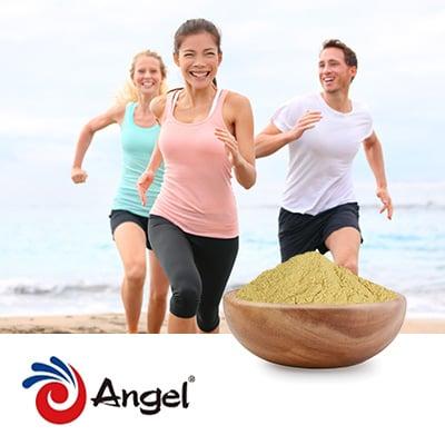 Angel Yeast Beta Glucan (1,3/1,6) 70% Pro by Angel Yeast