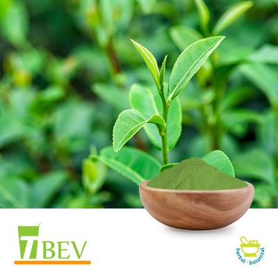 Caffeine 98% (Natural, Green Tea Origin) by T-Bev