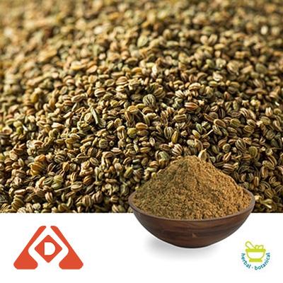 Celery Seed Extract 10:1 TLC by Hongda