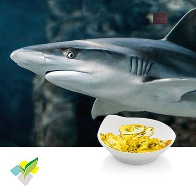 Compound Fish Oil Softgel 500mg by Runxin Biotech