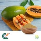 Carica Papaya Extract 10:1 by TRG