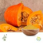 Conventional Pumpkin Powder by Qimei Industrial Group