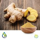 Ginger Powder (Steam Treated) by S.A.HerbalBioactives
