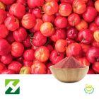 Acerola Cherry Extract 27% VC