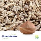 American Ginseng Root Extract 5% Ginsenosides HPLC