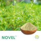 Andrographis Paniculata P.E. 10% AG by Novel Nutrients Pvt., Ltd
