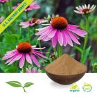 Echinacea Angustifolia Root Powder, Organic