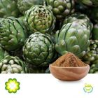 Artichoke Extract 2.5% Cynarin UV by Rainbow