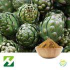 Artichoke Extract 2.5% Cynarins HPLC