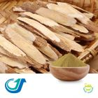 Astragalus Root 7:1 Extract