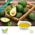 Avocado Oil Extra Virgin by NB Foods S. de R.L. de C.V. (Natura Bio Foods)