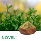 Bacopa Monnieri P.E. 20% Bacosides by Novel Nutrients Pvt., Ltd