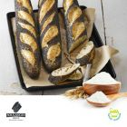 Baguette Flour