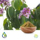 Banaba Extract 1% Corosolic Acid