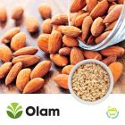 Blanched Diced Almonds 12/08 by Olam