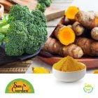 Broccoli Sprout & Turmeric Powder - BrassiBliss® Original by SunGarden