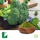 Broccoli Juice Powder by Longze Biotechnology