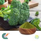 Broccoli Powder by Hanzhong Trg Bioctech Co., Ltd.