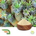 Bromelain 1200 GDU/G by Chongqing Joywin Natural Products Co.,Ltd.