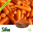 Carrot Powder -40 [Non-Chinese Origin]