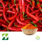 Cayenne Pepper Extract 100000 SHU
