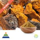 Chaga Mushroom Extract 30% Polysaccharides UV Preorder