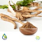 Chicory root powder steam treated by S.A.HerbalBioactives