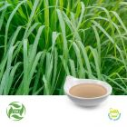 Citronella Oil (25kg Drum) by Ji'AnZhongxiangNaturalPlantCo., Ltd