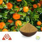 Citrus P.E. Citrus flavonoids 5% by Shaanxi HongDa PhytoChemistry Co., LTD
