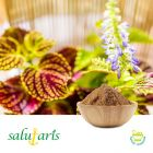 COLEUS EXTRACT 10% POWDER BY  HPLC by Salutaris