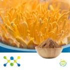 Cordyceps Militaris Extract 4% Cordycepic Acid