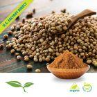 coriander seed bulk