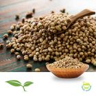 Coriander Seed Whole by American Botanicals
