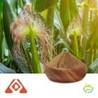 Corn Silk Extract 4:1 TLC