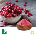 Cranberry Extract 4:1 by Longze Biotechnology