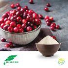 Cranberry Extract 10:1