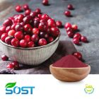 Cranberry Powder by Xi An Sost Biotech Co., Ltd