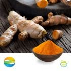 Turmeric extract Curcumin 95% HPLC Regular by Chenguang Biotech Group Co., Ltd