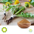 Dandelion Extract 5:1 by Rainbow