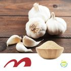 Dried Garlic 40-80 Mesh